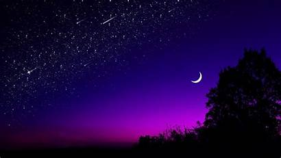 Sky Moon Starry Tree Night Stars Dark