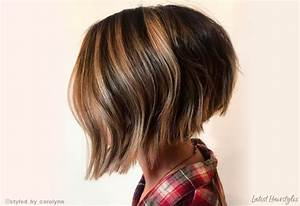 Hair Length Chart 19 Ways To Have Short Brown Hair In 2020