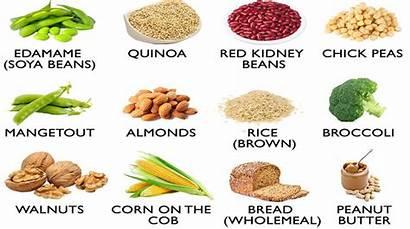 Protein Loss Weight Diet Foods Ayurveda Tamasha