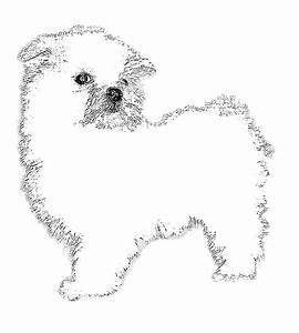 Coloring Pages Baby Puppy Az Cute Pictures To Color Online ...