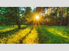 Earliest Summer Solstice in 120 Years Farmers' Almanac
