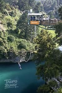 Bungee jumping in New Zealand - Bucket List | Pinterest ...