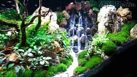 Most Beautiful Aquascapes by Most Beautiful Idea Waterfall Aquascape 2