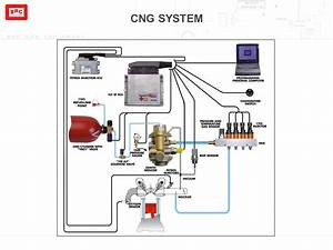 Cng Kit Wiring Diagram