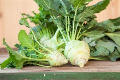 cuisiner des feuilles de blettes guide des légumes de saison à cuisiner en décembre page 3