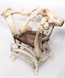 Modernist Sculptural Chair Crafted Out Of Cow Bones At 1stdibs