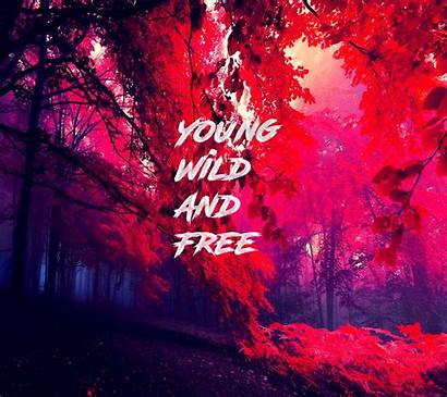 Wild Young Frases