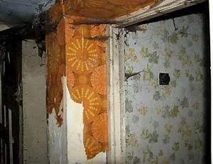 Décollage Papier Peint : comment d coller de la tapisserie ~ Dallasstarsshop.com Idées de Décoration