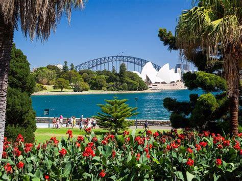 royal botanical gardens royal botanic garden and the domain sydney australia