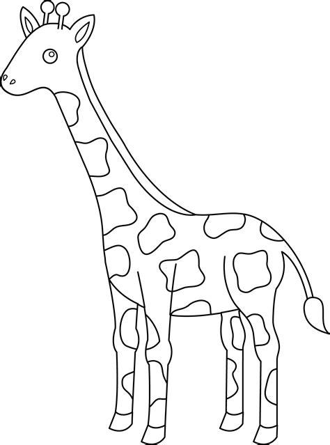 colorable giraffe design  clip art