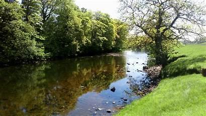 River Fishing Bank