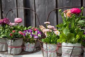 Grüne Kügelchen In Blumenerde : gartentipps im m rz ziergarten gartenzauber ~ Lizthompson.info Haus und Dekorationen