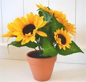 Sonnenblume Im Topf : zimmer kunstpflanzen und andere wohnaccessoires von hkt home deco online kaufen bei m bel ~ Orissabook.com Haus und Dekorationen