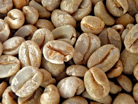 Free for commercial use no attribution required high quality images. Making Coffee   The coffee seeds after they have been skinne…   Flickr