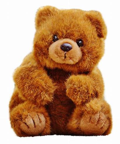 Teddy Bear Transparent Stuffed Bears Toy Animals