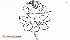Mogra Flower Ou... Mogra Quotes
