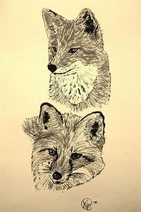 522 Best Images About Graphite Pencil Drawings Of Fox On Pinterest