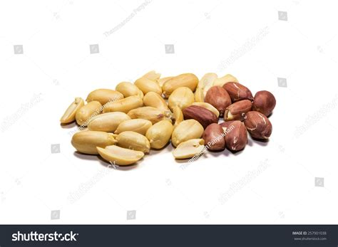the peanut or groundnut arachis hypogaea is a species in