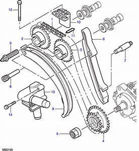 Freelander 1996-2006    Engine    2000 - Diesel   Timing Chain And Pulleys