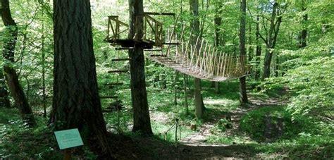 Cīravā atklās jaunu dabas taku (With images)   Plants ...