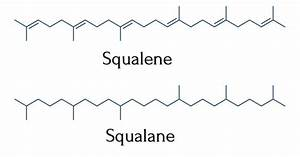 The Formulator U0026 39 S Ultimate Guide To Squalene And Squalane