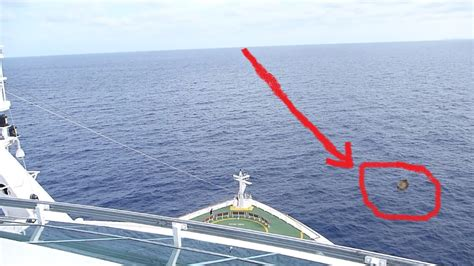 Mermaid Caught On Tape By Cruise Ship (Video) U2013 Covered Truths