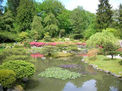 seattle japanese garden wa top tips before you go with