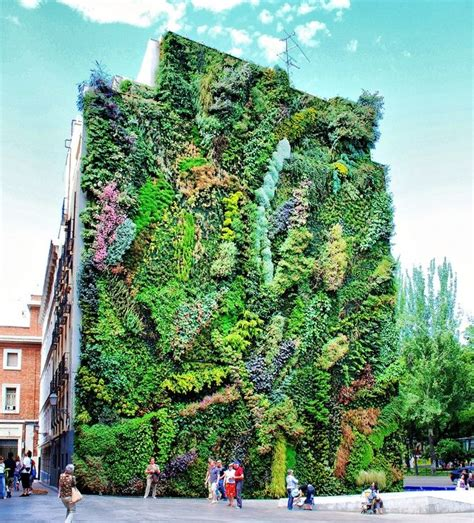 blanc vertical gardens vertical garden by patrick blanc at the caixa forum in madrid obsessed with his large scale