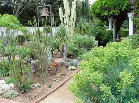 landscaping  succulents landscaping network
