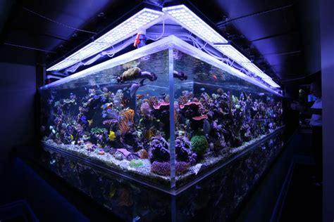cheap reef tank lighting led lighting best ideas led aquarium lighting led reef