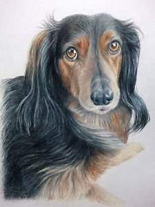 Pencil Drawings Love Hand Drawn Custom Commission Pet Portrait 11 X 14 Colored