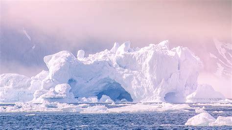 arctic region policy international