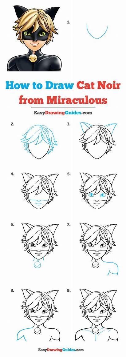 Noir Cat Miraculous Draw Drawing Tutorial Easy