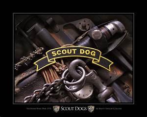 ascoutdog scout dog vietnam