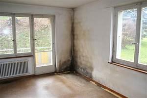 Schwarzer Schimmel In Der Wohnung : dusche wand feucht verschiedene design ~ Michelbontemps.com Haus und Dekorationen