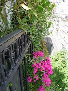 Plantes Et Fleurs Pour Balcon : balcon en ville conseils pour un petit balcon avec ~ Premium-room.com Idées de Décoration