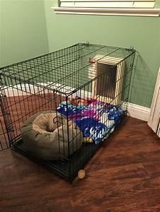 Best 25 diy kennel indoor ideas on pinterest diy dog for Wooden indoor dog pen
