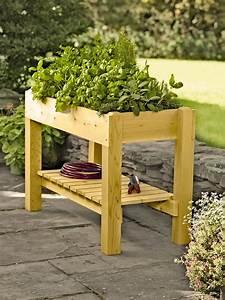 Planter Boxes: Standing Height Cedar Raised Garden