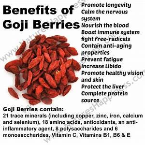Benefits of Goji Berries - Natures Happiness Blog - News ...