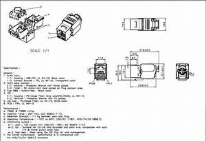Keystone Jack Wiring Diagram Cat 3 : cat 6a utp keystone jack d link thailand ~ A.2002-acura-tl-radio.info Haus und Dekorationen