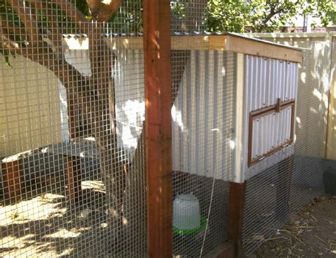 homemade chicken coop build  custom version  happy hens  poultry guide