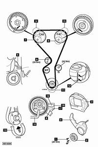 Peugeot Timing Belt