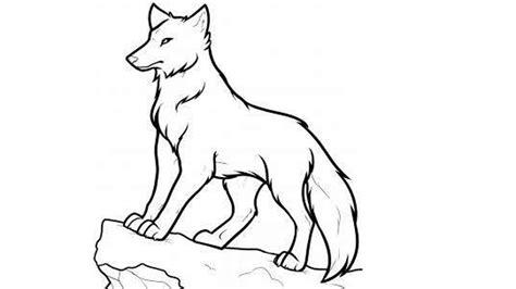 draw  wolf step  step draw  wolf  kids