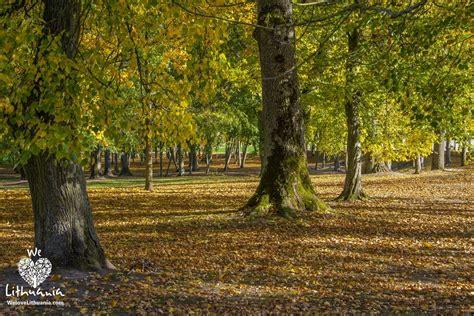 Parkas rudeni   We love Lithuania