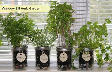 Window Seal Pots by How To Make Your Own Window Herb Garden