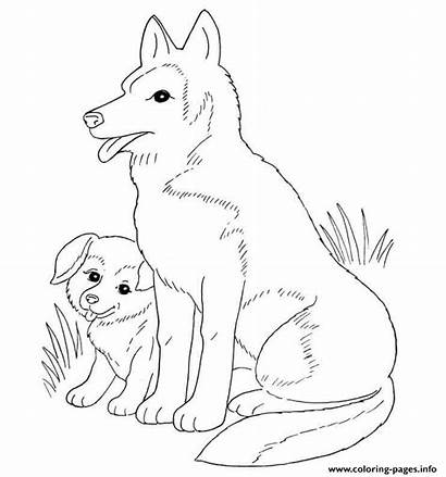Coloring Pages Dog Puppy Mother Retriever Printable