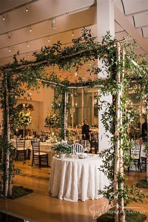 bringing  garden indoors  canopy  green