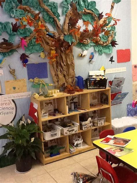 best 25 science area preschool ideas on 381 | 6574e10f7fe1b43e86094e920b5378fb science area for preschool science centers