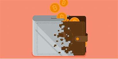 Crypto Wallet Wallets Cryptocurrency Save Distinctive Buyers