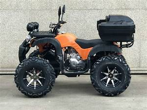 Agy High Power Engine 250cc Gas Powered Buggy Atv